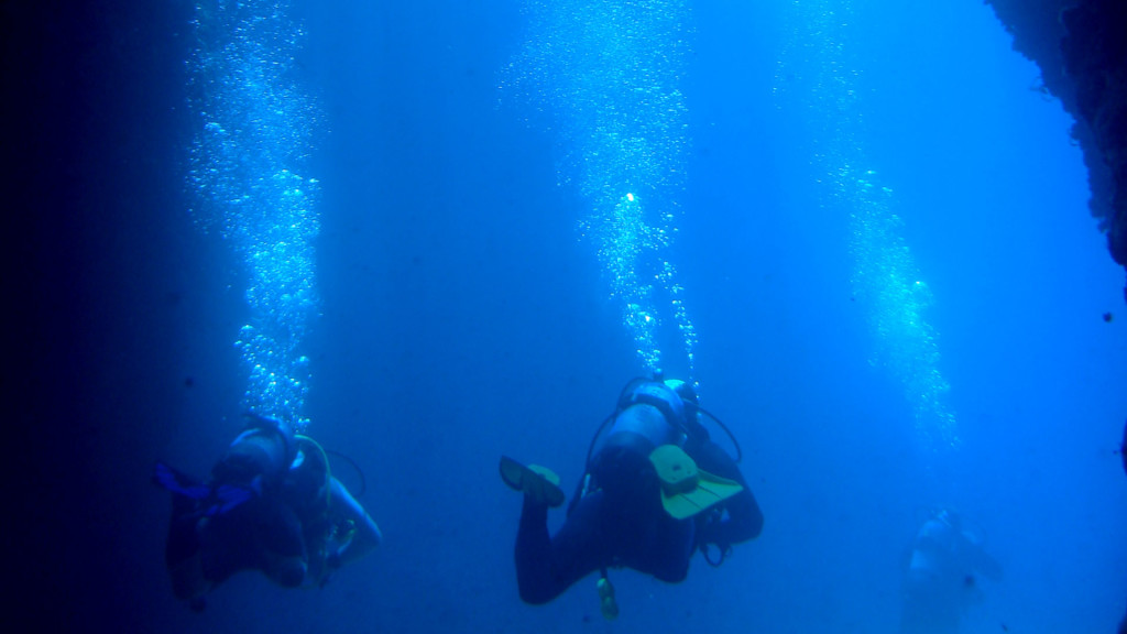 Taormina_diving_isola-bella-immersione_ara