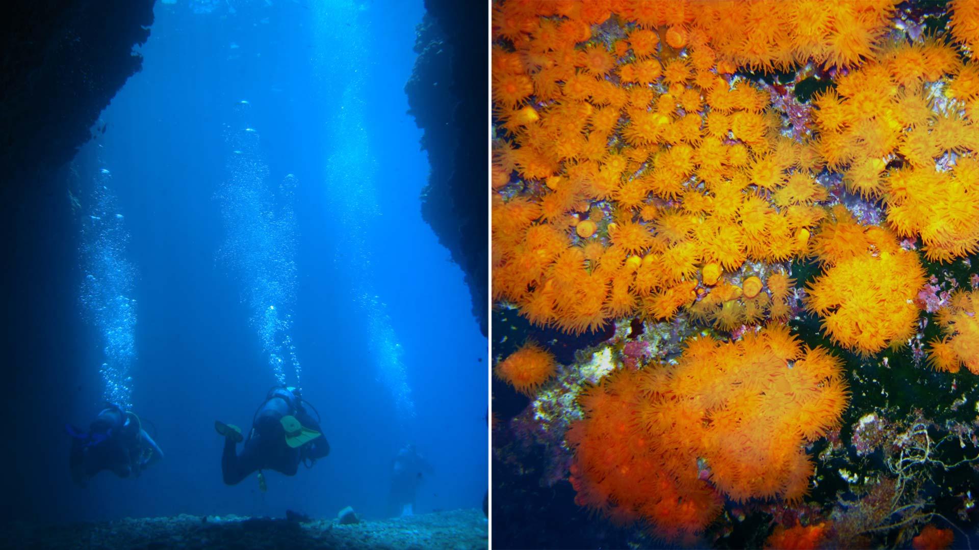 immersione-grotta-azzurra-taormina