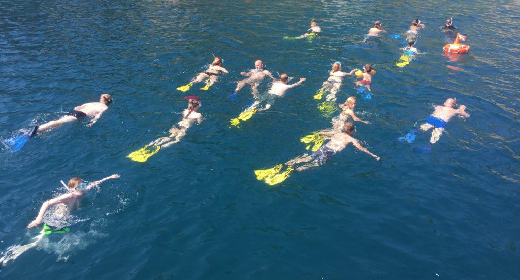 snorkeling guidato